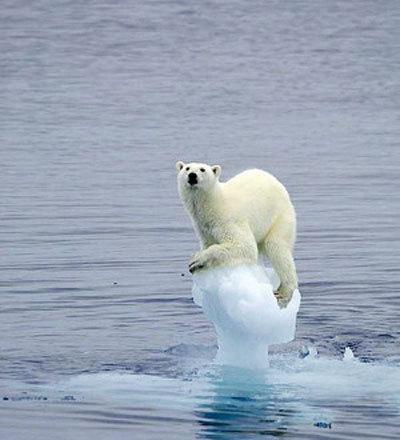 遏制全球变暖