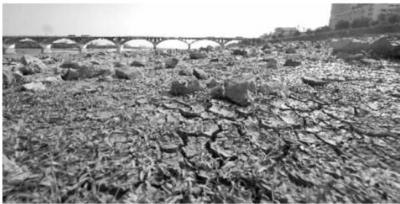 10月15日,湘江长沙段主航道干涸的河床。 新华社 图