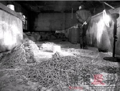 2月6日,黎�S乡花桥村一处生产酱菜的作坊内,豆角随意堆放在地上。图/记者张轶