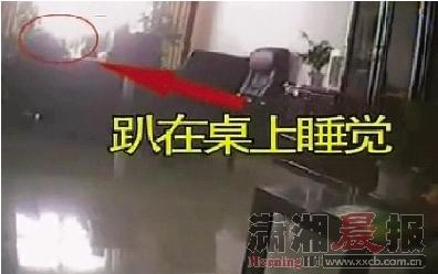 2月14日下午,郴州市财政局办公室内,一名工作人员上班时间趴在桌上睡觉。视频截图