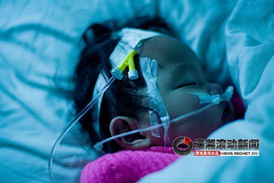 刘启宣说,有一家上海的医院打电话过来了解情况,希望能给患先天性心脏病的小海燕做手术。图/潇湘晨报滚动新闻记者 张轶