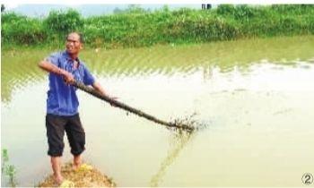 ②6月12日,隆回县桃洪镇竹塘村一山塘,67岁的罗柱生回忆当时发现5名小孩溺水身亡后的情景。记者 武席同 摄