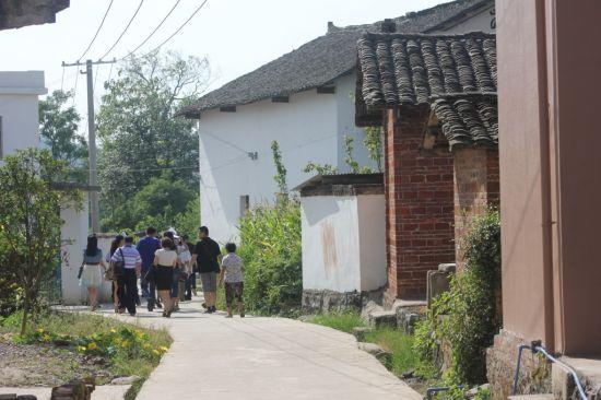 铺上了水泥路的晓江口村