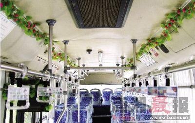 7月25日,118路公交车司机周辉在车厢内挂上塑料的绿色藤蔓,给炎炎夏日带来一丝凉意。 图/实习生杨旭