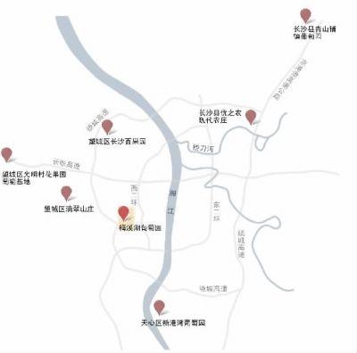 """""""长沙葡萄地图"""" (制图/杨诚)"""