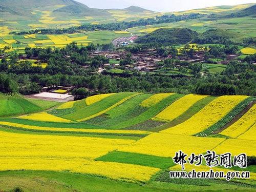 美丽的西部风光(图片来源:郴州新闻网)