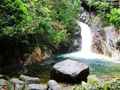 郴州 莽山 国家 森林 公园 2014 年 9 月 4 5 日 郴州 ...