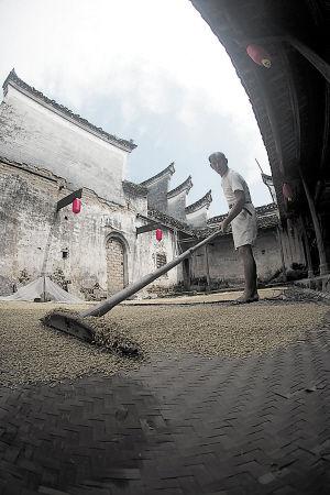 同湖南其他乡村一样,七八月是这里最为忙碌的农作时节。