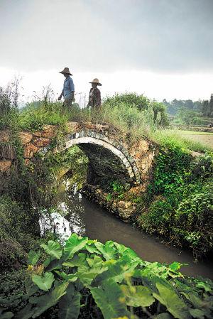 在跳马涧上静静躺了几百年的百世桥,不仅见证着人间沧桑,至今还是小溪两边群众往来的主要通道。   李锋 摄