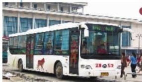 2004年 更换的安凯牌无障碍公交车引发了很多人的好奇和关注。