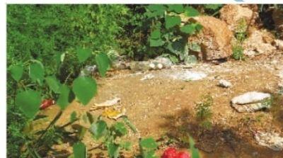 湘潭九华响水乡昭潭村烟山组,这处王姓墓葬被盗掘。 盛兆华 摄