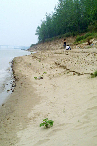 长沙月亮岛攻略 民间传说的游玩之地_新浪湖南旅游