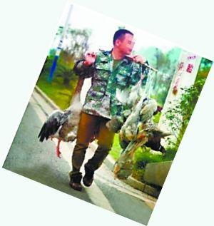 打鸟、贩鸟明目张胆。微博图片