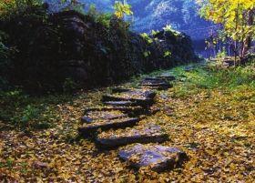 桐子坳,永州秋天最美的村庄。