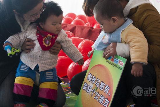 2012年11月11日上午,湘春路金地大厦22楼 ,BB团宝宝相亲会,多多和苗苗俩名小宝宝在家长带领下,相互认识。图/实习生 蒋丽梅