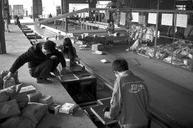 11月11日,雨花区黎圫乡花桥村湖南申通快递中转站,工作人员正在称重、扫描长沙分公司运过来的快件。