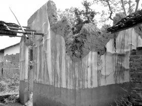图为2011年的沈家大屋,部分建筑已经坍塌。至今状况依然未得到改善。