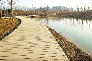 随着建设的推进,洋湖湿地气质日益成熟