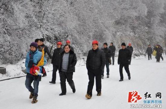 雪中游客踏步旅行