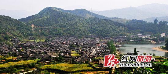 """中国第一""""蛇村""""之谜"""