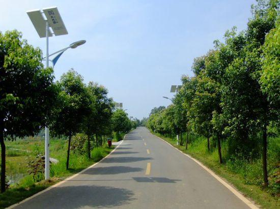 生态环保的太阳能路灯@宽敞舒适的柏油沥青路