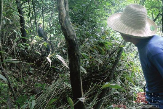 5月6日,安化县长塘镇千丘村,姚姓老人(右)和其他村民、警察一起最早发现张欢(化名)已经吊死在树上。组图记者邵骁歆
