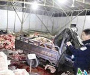 政府雇员发死猪财 拷问政府监管职能