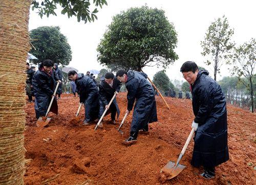 2月25日,徐守盛、杜家毫等领导参加义务植树活动。 本报记者 张目 摄