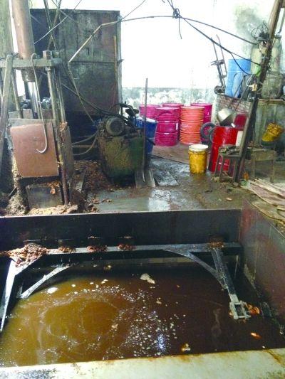 皮革厂正在用猪皮油和猪肉边角料炼油。 记者 龚化 摄