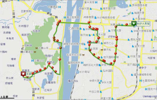 (202路经过线路图.)-网友吐槽长沙公交 202路最绕17路最挤405路最图片