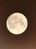 """""""超级月亮""""现身长沙"""