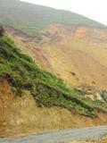 攸县60亩山林被毁无法立案