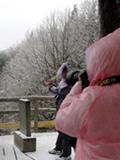 2012张家界第一场雪景